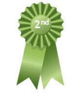 Kindermusik Green Award - 2nd Place